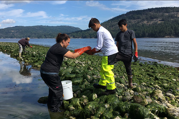 researchers testing bacteria on rocks in body of water