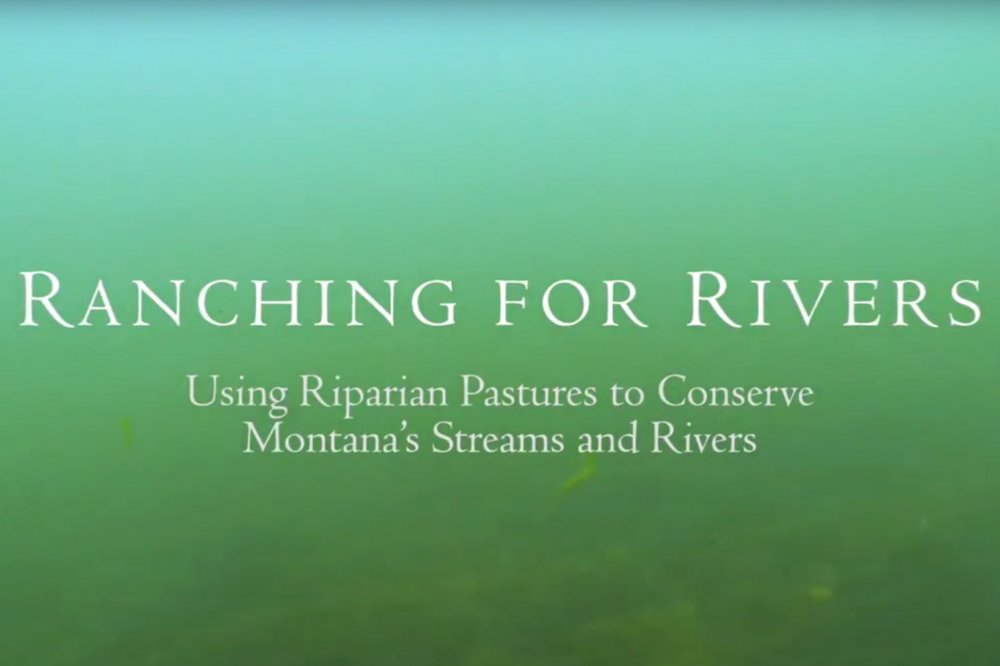 ranching for rivers video titlepage