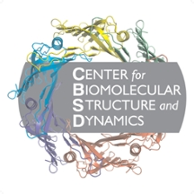 Center for Biomolecular Structure and Dynamics (CBSD) logo