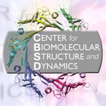 Center for Biomolecular Structure and Dynamics logo